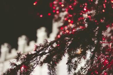 Lights-14
